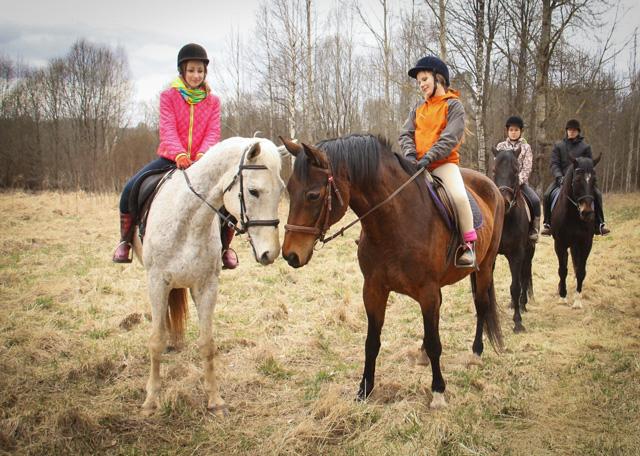 Zirgu izjādes ar jāšanas iemaņām.  Zirgu izjādes ar jāšanas iemaņām.