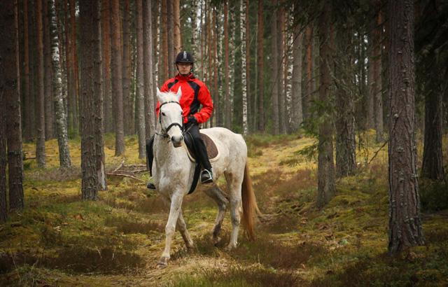 Zirgu izjādes ar jāšanas iemaņām.  Zirgu izjādes ar jāšanas iemaņām.  Zirgu izjādes ar jāšanas iemaņām.